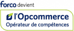 OPCOMMERCE ex-FORCO