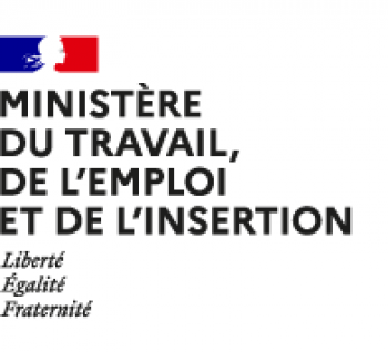 Logo Ministère Travail Emploi Insertion